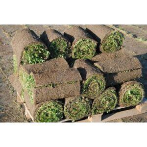 KVĚT zahradní architektura Luční koberec 201 a více m2