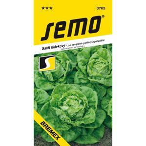 SEMO Salát hlávkový BREMEX