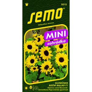 SEMO Slunečnice roční BALLAD F1 - mini